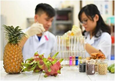 Ngành Công nghệ Thực phẩm của STU có gì đặc biệt?